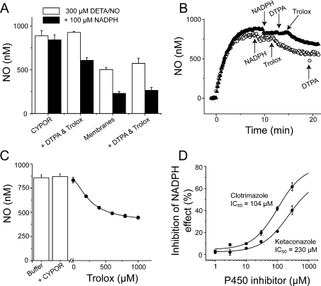 CYPOR requires a partner to inactivate NO(A) Plateau NO concentrations following application of NADPH to 300 μMDETA/NO and purified CYPOR (100 m-units/ml) or brain membranes (2 mg ofprotein/ml)±DTPA and Trolox (both 100 μM). In the case of purified CYPOR, NADPHreduced the NO concentration (and therefore increased NO consumption) only when DTPA and Trolox werepresent, whereas DTPA and Trolox had no effect on NADPH-dependent NO consumption by brain membranes.n=4. (B) Example traces showing the NO profile when300 μM DETA/NO was added to 100 m-units/ml purified CYPOR. Trolox, but not DTPA (both100 μM), was required for NADPH-dependent NO consumption. (C) The effectof 100 μM NADPH addition to 300 μM DETA/NO±100 m-units/ml CYPORand NADPH plus different Trolox concentrations. A logistic fit to the data (continuous line) givesan EC50 for Trolox of 270 μM. n=4. (D) Thedecrease in NO concentration on the addition of NADPH to brain membranes (2 mg/ml) plus300 μM DETA/NO was reduced by the cytochrome P450 inhibitors clotrimazole (squares)and ketaconazole (circles). IC50 values were calculated from logistic fits to the data(solid lines). n=4.