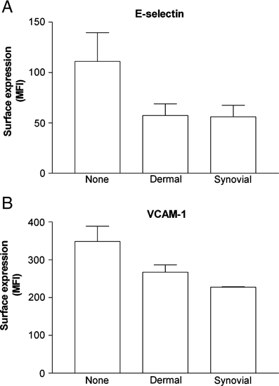 Effect of RA co-culture on the surface expression of E-selectin or VCAM-1 by EC. EC from cytokine treated co-cultures were stained with antibodies against (A) E-selectin or (B) VCAM-1 and surface expression was assessed by flow cytometry (expressed as MFI). Data are mean±SEM from three independent experiments, using three different donors for each cell type.