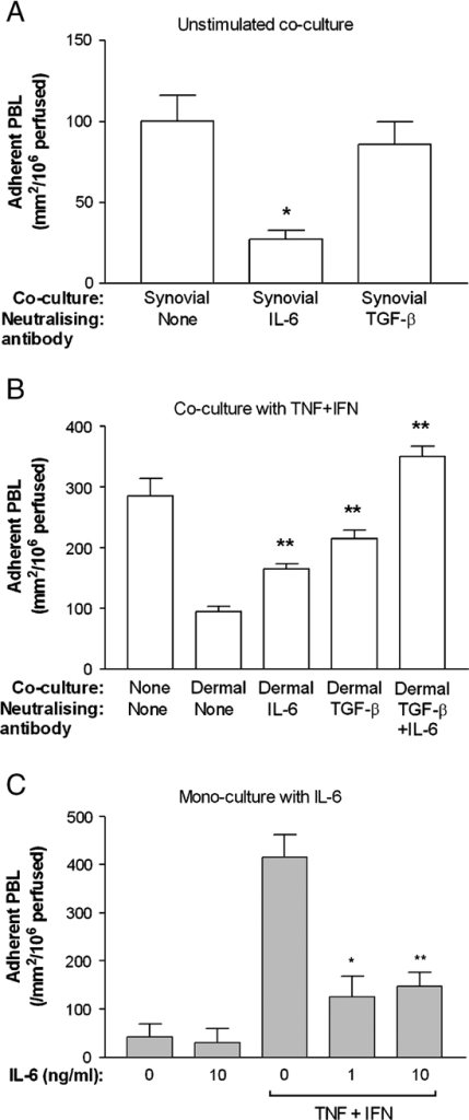 Effect of neutralising IL-6 or TGF-β, or of adding IL-6 on lymphocyte adhesion. (A) Neutralisation in unstimulated endothelial-RA synovial fibroblasts co-cultures; (B) neutralisation in cytokine-stimulated endothelial-RA dermal fibroblasts co-cultures; (C) addition of IL-6 to unstimulated or cytokine-stimulated EC mono-cultures. Data are mean±SEM from at least three experiments, using at least three different donors for each cell type. In all cases, ANOVA showed a significant effect of treatment on lymphocyte adhesion (p<0.01). *p<0.05 and **p<0.01 by Bonferroni test compared with co-cultures without neutralisation in (A) and (B), or to cytokine-treated mono-culture without IL-6 in (C).