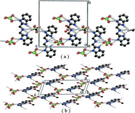Part of the crystal structure of the title compound, showing the formation of the two-dimensional network parallel to the (010) plane, built from N—H···O and O—H···O hydrogen bonds which are shown as dashed lines. (a) the view along the a axis and (b) the view along the b axis. For the sake of clarity, H atoms not involved in hydrogen bonding have been omitted.