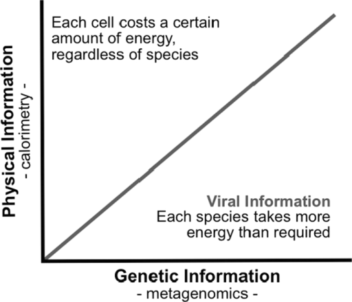 Searching for viral information. The line indicates where the amount of physical information and genetic information contained within cells are equal. Communities above the line contain more physical than genetic information due to low genetic diversity (few species but many individuals), with each individual requiring a certain amount of energy regardless of its genetic composition. Communities below the line contain more genetic information. It is here that the energetic cost of information becomes apparent, and where we expect to find viral information