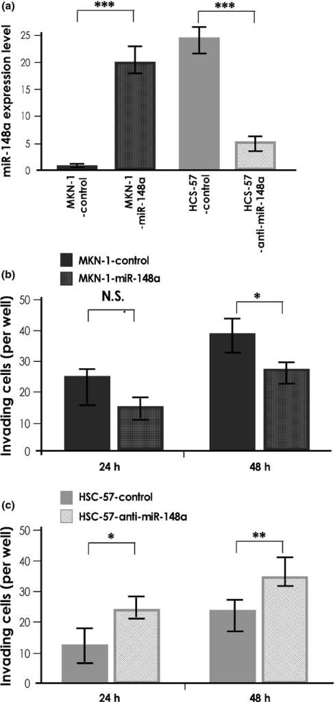 MicroRNA-148a (miR-148a) expression and functional analysis. (a) Quantitative RT-PCR analysis of miR-148a in MKN-1 gastric cancer cells transfected with pre-miR-148a and HSC-57 cells transfected with anti-miR-148a. (b) Effect of miR-148a downregulation on cell invasion of MKN-1 cells. MKN-1 transfected with negative control miRNA and pre-miR-148a were incubated in Boyden chambers. (c) Effect of miR-148a downregulation on cell invasion of HSC-57 cells. HSC-57 transfected with negative control miRNA and anti-miR-148a were incubated in Boyden chambers. Results are mean ± SD of triplicate measurements. *P < 0.05; **P < 0.01; ***P < 0.001. N.S., not significant.
