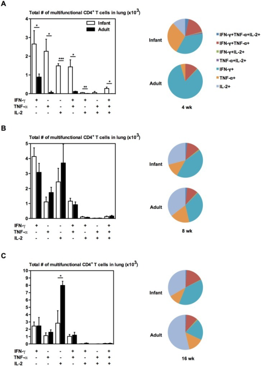 Multifunctional profile of CD4+ T cells in the lung of infant and adult mice following BCG immunization.Infant and adult mice were immunized s.c. with BCG and sacrificed at 4 (A), 8 (B), or 16 (C) weeks following immunization. Cells from the lung were stimulated with M.tb CF + crude BCG for 24h or left unstimulated as a control. Cells were stained and analyzed by flow cytometry. Average proportions displayed in pie chart are of the CD4 T cells expressing specific cytokine combinations. Absolute numbers of CD4+ T cells in the tissues were calculated and displayed in bar graphs. Results are from one independent experiment per timepoint, n = 4-5/group/timepoint. Data are expressed as Mean ± SEM. *, p < 0.05; **, p < 0.005; ***, p < 0.0005.