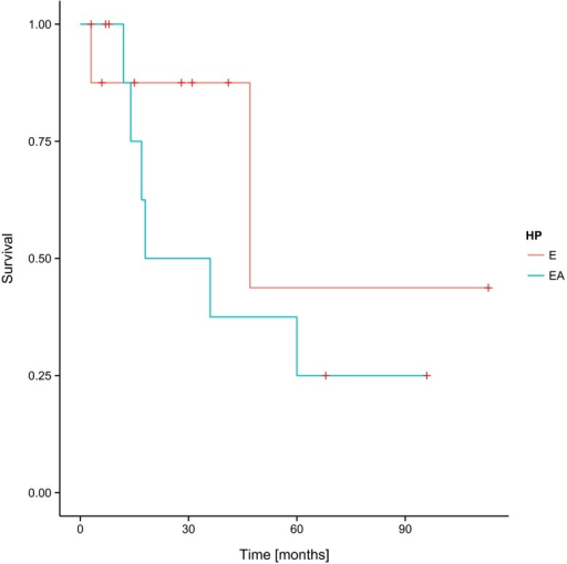 Progression-free survival (PFS) and histopathological diagnosis in the group of patients involved in the study—log-rank test p = 0.31704. E ependymoma, AE anaplastic ependymoma