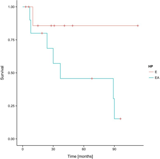 Overall survival (OS) and histopathological diagnosis in the group of patients involved in the study—log-rank test p = 0.11713. E ependymoma, AE anaplastic ependymoma