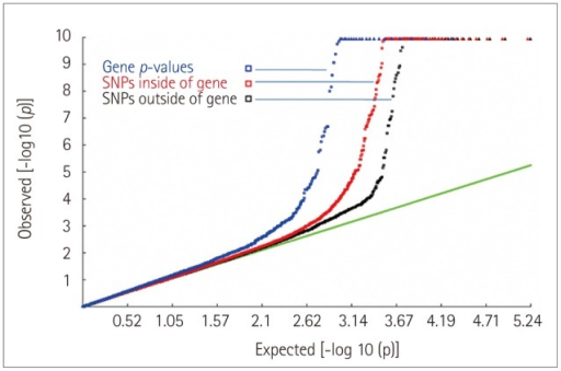 Quantile-quantile plots of the association results for the initial genome scan. The tail of the distribution of gene-based probability values deviated more significantly than those of SNPs inside or outside of the gene, which suggests that the power was higher for a gene-based association analysis than a single SNP-based GWAS in detecting associations. GWAS: genome-wide association study, SNP: single-nucleotide polymorphism.