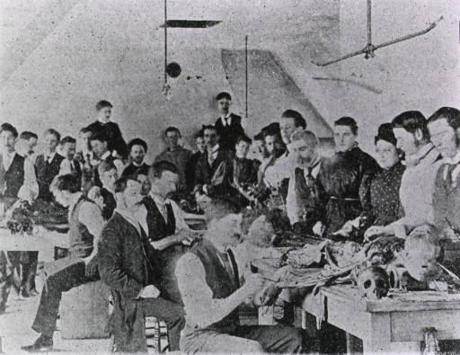 <p>Interior of anatomical laboratory with students grouped around table.</p>