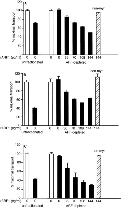 Recombinant ARF1 restores GTPγS sensitivity to  ARF-depleted cytosol. Unfractionated bovine brain cytosol (5 μl)  and ARF-depleted cytosol (5-μl equivalents) were tested in the  medial (A), trans (B), and TGN (C) assays in the presence of 2 μM  GTPγS (solid bars) or in its absence (open bars). The indicated  amounts of myr-rARF1 (5.7% myristoylated) or non–myr-rARF1  (hatched bar) were titrated into the assay. Data are a combination of two independent experiments. The maximum counts per  minute for unfractionated cytosol were 7,764 ± 184 in the medial  assay, 4,076 ± 64 and 2,960 ± 203 in the trans assay, 3,030 ± 204  and 3,389 ± 48 in the TGN assay. The maximum counts per  minute for ARF-depleted cytosol were 4,866 ± 114 and 8,850 ± 15  in the medial assay, 2,184 ± 323 and 1,881 ± 15 in the trans assay,  and 2,981 ± 153 and 2,498 ± 31 in the TGN assay. The acceptor  membranes used in these experiments were different from the preparation used in Fig. 4 and exhibit less cytosol-independent inhibition of transport to the TGN by GTPγS (compare Figs. 4 C and 5 C).