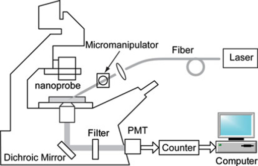Instrumental system for fluorescence measurements using nanoprobes.