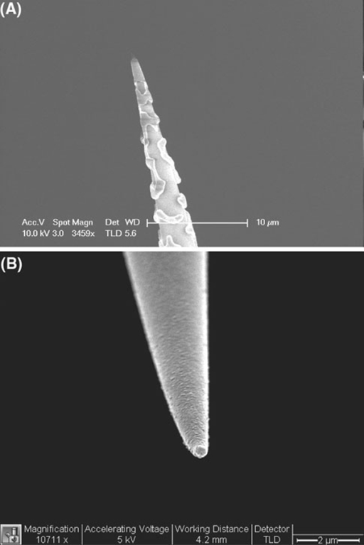 SEM images of a silver- and b aluminum-coated nanofibers after plasma cleaning.