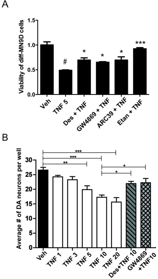 TNF-induced neurotoxicity in DA cells and neurons is attenuated by SMase inhibitors.A, TNF-induced cytotoxic cell death is dependent on SMase hydrolysis of sphingomyelin. Diff-MN9D cells were pre-treated for 30 minutes with 5 μM desipramine (Des) or 10 μM GW4869 or 1 μM ARC39 followed by 5 ng/mL TNF for 48 hrs prior to MTS viability assay. Cell viability was measured by the MTS assay described under Methods. All values represent group means +/− SEM, n =3 - 4. One-way ANOVA with Tukey's post-hoc; # denotes difference between TNF and vehicle at p < 0.001, * and *** denote difference from TNF alone at p < 0.05 or p < 0.001, respectively. B, TNF induced dose-dependent death of primary ventral mesencephalon DA neurons with SMase inhibitors affording robust rescue; 5 μM Desipramine (Des); 10 μM GW4869. All values represent group means +/− SEM, n =3 - 4. One-way ANOVA, Tukey's post-hoc test to compare the extent of dose-dependent cell death in response to increasing concentrations of TNF and two-way ANOVA with Tukey's post-hoc test to compare inhibitor conditions to 10 ng/mL TNF without inhibitors. * denotes p < 0.05, ** denotes p < 0.01, *** denotes p < 0.001.