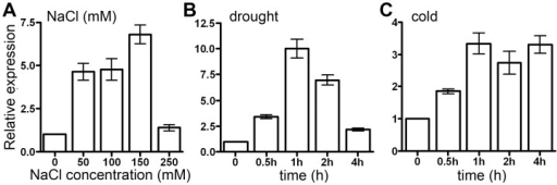 OsAPX2 expression response to drought, cold and salt stresses.A: OsAPX2 expression response to salt stress. B,C: Time course of OsAPX2 expression during drought and cold treatments. Actin was used as an internal control. Data represent means ± SD of three replicates.