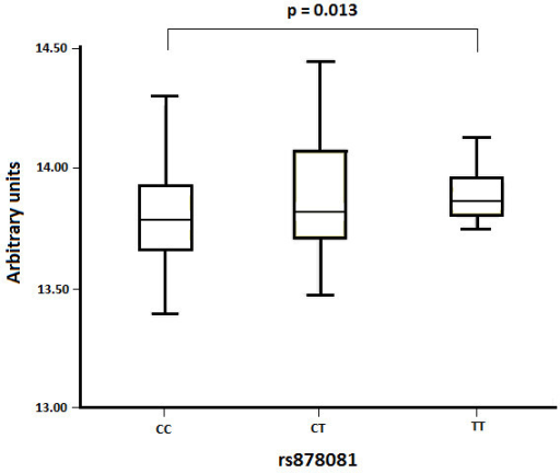 Comparison of expression levels of AIRE obtained from the GEO database according to the genotype of rs878081. Results of AIRE mRNA expression are shown in a boxplot. The P-value was obtained by the Joncheere-Terepstra method.
