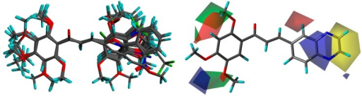 3D-QSAR analyses.Notes: Structure alignment of the 61 molecules (left panel). CoMSIA contribution volumes from all molecules (right panel); volumes were plotted with 80 for positive contributions (green for steric and blue for electrostatic fields) and 20 for negative contributions (yellow for steric and red for electrostatic fields); the structure of compound 7 is represented.Abbreviations: 3D-QSAR, three dimensional quantitative structure–activity relationship; CoMSIA, comparative molecular similarity index analysis.