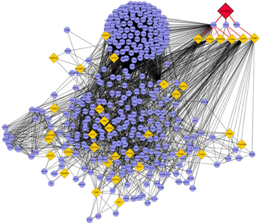 Interaction network of AHSG protein. Diamond nodes are proteins differentially expressed from samples; circular nodes are 1 degree of biological interactions.