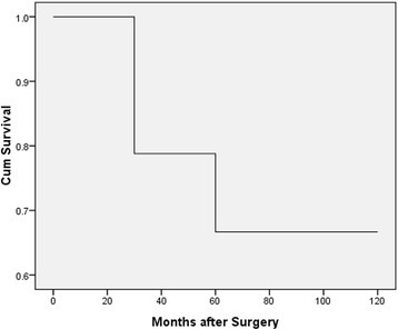 A Kaplan-Meier analysis of the overall survival of young patients with LSSC