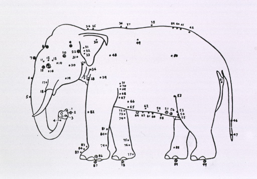 <p>Drawing of an elephant in profile with acupuncture points indicated.</p>