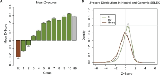 Effects of SELEX on structural stability of RNA sequences.(A) Average Z-score of sequences in the initial library (brown bar), each pool of Neutral SELEX (green bars) and the sequences from the Hfq Genomic SELEX experiment after 9 rounds of selection (grey bar). Numbers indicate the SELEX cycle. (B) Comparison of the distributions of Z-scores of the 9th round of Neutral SELEX, the 9th round of Hfq Genomic SELEX and the genomic library. These are all plotted next to the normal distribution (expected from random sequence), shown with the black line.