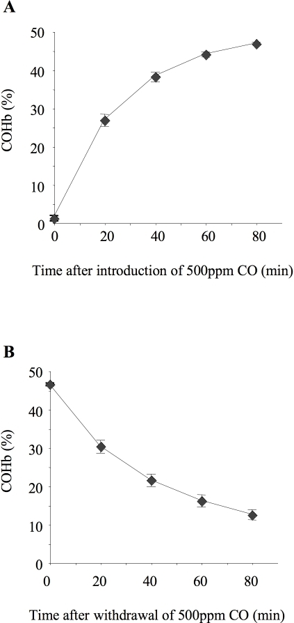 Carboxyhemoglobin association and dissociation kinetics.Time course for association (A) and dissociation (B) of blood carboxyhemoglobin (COHb) in ventilated, instrumented mice. For association kinetics, mice were ventilated from time 0 with 500 ppm carbon monoxide (CO) and arterial blood samples taken every 20 minutes. For dissociation kinetics a separate set of mice were ventilated for 80 minutes with 500 ppm CO, then at time 0 inspired gas was switched to 0 ppm CO and samples were taken every 20 minutes thereafter. n = 4/time point.