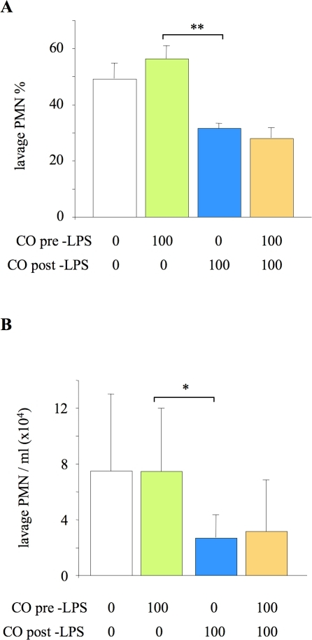 Impact of CO exposure either pre- or post- LPS challenge on alveolar neutrophil recruitment.Neutrophil (PMN) % (A) and number/ml (B) in lung lavage fluid of mice exposed to 100 ppm carbon monoxide (CO) for 24 hours either before or after lipopolysaccharide (LPS) instillation. *p<0.05, **p<0.01 vs 100 ppm CO pre-LPS; n = 8/group. For comparison, data from Figure 1 of the animals exposed either to 0 ppm or 100 ppm CO for 24 hours both pre- and post-LPS are shown (but not included in statistical analysis).