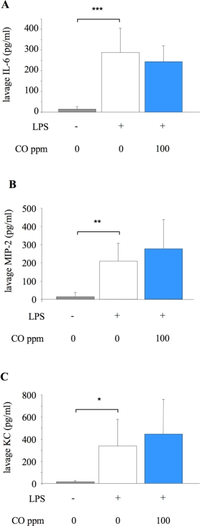 Lavage fluid cytokine concentrations 6 hours after LPS challenge.Concentration of cytokines IL-6 (A), MIP-2 (B), and KC (C) in lung lavage fluid of untreated mice (no LPS or CO), and mice exposed to 0 or 100 ppm carbon monoxide (CO) for 6 hours after LPS instillation. *p<0.05, **p<0.01 ***p<0.001 vs LPS +0 ppm CO; n = 7–8/group for IL-6 and MIP-2; n = 14–15/group for KC.