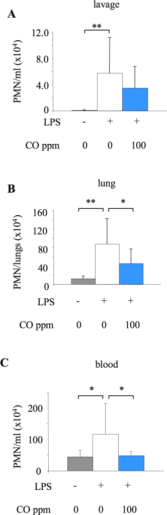 Tissue neutrophil numbers 6 hours after LPS, determined by flow cytometry.Neutrophil (PMN) number in lavage fluid (A), lung tissue (B) and blood (C) from untreated mice (no LPS or CO), or mice exposed to 0 or 100 ppm carbon monoxide (CO) for 6 hours after LPS instillation. Single cell suspensions were prepared from excised lungs of mice by mechanical disruption. Lavage, lung and blood cell samples were stained with fluorochrome-conjugated antibodies against cell-surface markers (CD11b, F4/80, Gr-1, L-selectin) and analysed by flow cytometry. Microsphere counting beads were added to enable cell quantification. Neutrophils were identified based on forward/side-scatter properties and F4/80 and Gr-1 expression. *p<0.05, **p<0.01 vs LPS +0 ppm CO; n = 9–10/group.