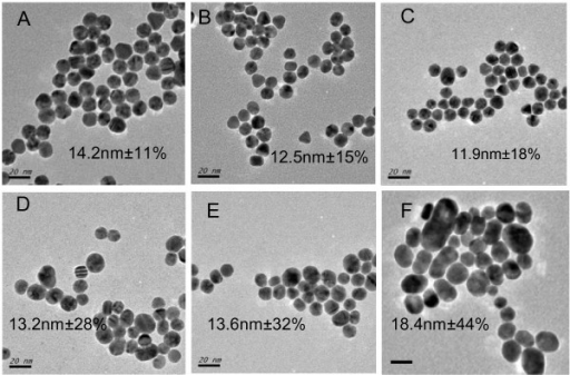TEM images of GNPs with indicated size and polydispersity. They are prepared by conventional citrate method from 0.25 mM (A), 0.50 mM (B), 1.0 mM (C), 1.5 mM (D), 2.0 mM (E), and 2.5 mM (F) chloroauric acid, respectively. Scale bar: 20 nm.