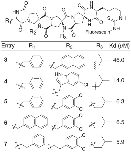 "The structures of spiroligomers, which explored the use of different functional groups as side-chains on a fixed backbone (all centers have ""S"" stereochemistry)."