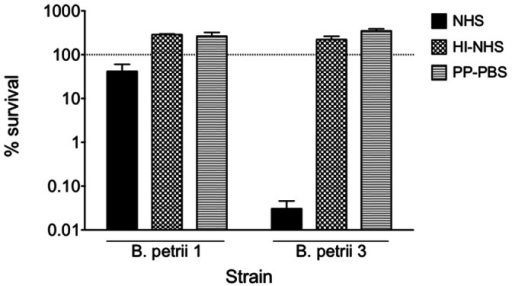 Serum susceptibility of B. petrii 1 and B. petrii 3.Bacterial colonies grown on SBA were resuspended in 1% proteose peptone - phosphate-buffered saline (PP-PBS) to a concentration of 1×107 CFU/ml. A 100-µl aliquot was then combined with an equal volume of 10% normal human serum (NHS) diluted in 1% PP-PBS. A 1% PP-PBS (0% serum) solution and heat-inactivated (56°C for 1 hour) normal human serum (HI-NHS) served as controls. Samples were incubated for 2 hours at 37°C with shaking. After incubation, samples were serially diluted, plated onto sheep blood agar plates, and grown 24–48 h at 37°C to determine the number of CFU and calculate % of survival.