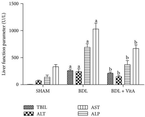 Levels of TBIL, ALT, AST, and ALP in serum. A: SHAM group (n = 10); B: BDL (n = 8); B: BDL + vitA group (n = 9). Data are presented as mean ± SD. aP < 0.05 versus SHAM group; bP < 0.05 versus BDL group.