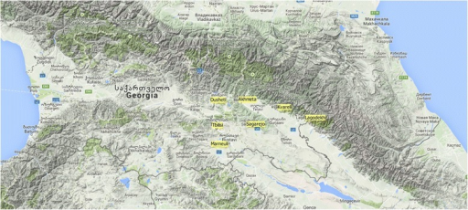 Location of seven Georgian wild populations analysed. The tag of seven wild populations is yellow filled. The image is a Google Physical Layer created in QGIS 2.0