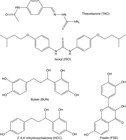 Chemical structures of compounds of the current study related to inhibition ofMtbHadAB. Thiacetazone (TAC) and isoxyl (ISO) have a sulfur containing group that could form a di-sulfide bond with Cys61 of HadA. Mycobacterium tuberculosis strains with C61S mutation in HadA are resistant to TAC and ISO