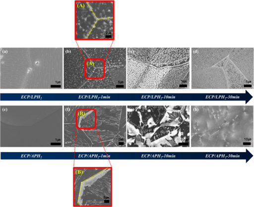 Time evolution of h-BN growth morphology on the Ni foils with ECP/LPH2 and ECP/APH2:(a,e) are SEM images of as annealed sample. (b,f), (c,g), and (d,h) are SEM images of h-BN growth for 1 min, 10 min, and 30 min respectively. The first row and the second row are the Ni foil with ECP/LPH2 and ECP/APH2, respectively. (A) and (B) are magnified SEM images taken from the area of Figure (b) and Figure (f) respectively.