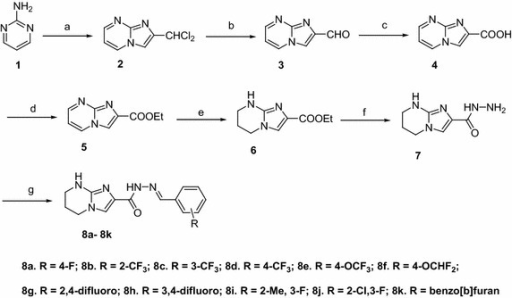 Synthesis of 5,6,7,8-tetrahydro-imidazo [1,2-a]pyrimidine-hydrazone derivatives 8a–k. Reagents and conditions: a 1,1,3-trichloro acetone, NaHCO3, EtOH, reflux, 10 h; b CaCO3, water, reflux, 1 h; c oxone, DMF, 5°C, 2 h; d Conc; H2SO4, ethanol, reflux, 16 h; e 10% Pd–C, Ethanol, H2, 30 psi, 3 h; f hydrazine hydrate, Ethanol, reflux, 6 h; g benzaldehydes a–k, ethanol, reflux, 6 h.