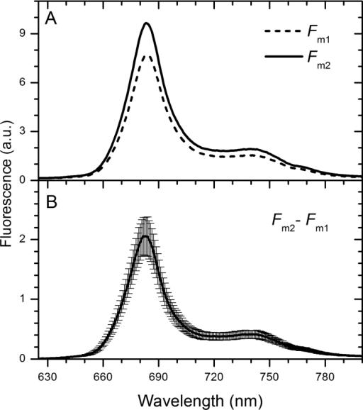 Changes in RT fluorescence emission spectra of cells exposed to low blue light. (A) Spectra of maximal fluorescence after 20min dark adaptation (Fm1, dashed line) following exposure to low blue light for 5min (7 µmol photons m−2 s−1) (Fm2; solid line). Representative curves are displayed. (B) Difference spectrum of Fm2 and Fm1. Presented curve is an average and SD from eight independent measurements.