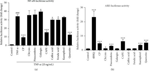 Chinese propolis and its major bioactive compounds suppressed mastitis pathogen-induced NF-κB activation and induces ARE transcriptional activity. (a) Effects of CP on mastitis pathogen-induced NF-κB promoter activation in HEK-293T cells. Cells were pretreated with 20 μg/mL CP and identified isolated active compounds from propolis (caffeic acid, 50 μM; CAPE, 5 μM; chrysin, 50 μM; ferulic acid, 50 μM; galangin, 25 μM; kaempferol, 50 μM; pinocembrin, 50 μM; and quercetin, 50 μM) for 1 h and then stimulated with TNF-α (25 ng/mL) for another 12 h. ###P < 0.001 compared to the vehicle control; ∗P < 0.05 and ∗∗∗P < 0.001 compared to TNF-α control. (b) Effects of propolis on mastitis pathogens-induced ARE promoter activation in HEK-293T cells. Cells were treated with CP or identified isolated active compounds. tBHQ (15 μM) treatment for 7 h was used as ARE positive control. ∗P < 0.05 and ∗∗∗P < 0.001 compared to the vehicle control. The data represent the mean ± SD of four independent experiments.