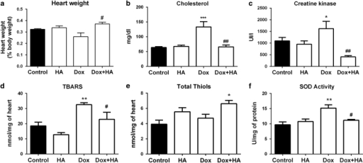 Histamine blocks doxorubicin-induced cytotoxic and oxidative damage in rat's heart. (a) Heart weight determined as percentage of body weight. (b) Serum cholesterol levels. (c) Serum CK-MB levels. (d) TBARS levels expressed as nmol/mg of cardiac tissue. (e) Thiols content expressed as nmol/mg of tissue. (f) SOD activity expressed as U/mg of heart proteins. (Six to eight rats per group, *P<0.05, **P<0.01, ***P<0.001 versus control; #P<0.05, ##P<0.01 versus Dox).