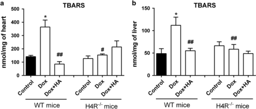 Doxorubicin and histamine effects on TBARS levels of H4R−/− mice compared with WT Balb/c mice. TBARS levels were determined in mice (a) heart and (b) liver of WT and KO mice. Data are expressed as nmol/mg of tissue. (8–12 mice per group, *P<0.05 versus WT Control; #P<0.05, ##P<0.01 versus WT Dox).