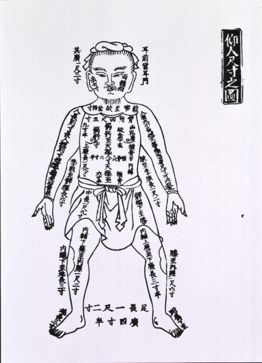 <p>Human figure, full length, frontal view with Chinese script on and around the body.</p>