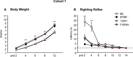 Body Righting Reflex And b Righting Reflex