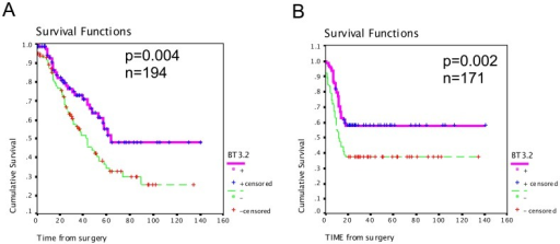Kaplan Meier analysis of BT3.2 in high-grade serous EOC.Kaplan-Meier curves of overall survival (A) and disease-free survival (B) in 194 and 171 patients, respectively. Significance (p) is indicated by log rank.