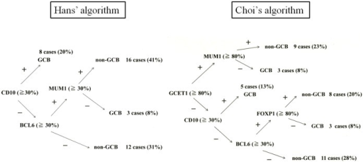 Distribution of GCB and non-GCB type according to Hans et al. and Choi et al.