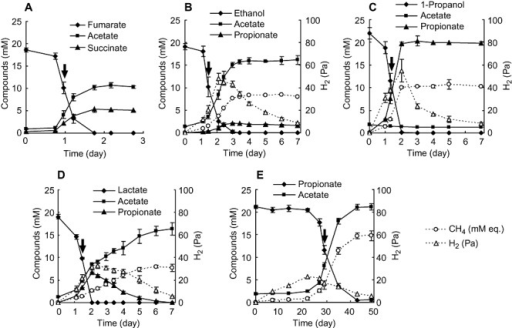 Substrate utilization and metabolite formation in monoculture grown on fumarate (A) and co‐cultures with M. thermautotrophicus on ethanol (B), 1‐propanol (C), lactate (D) and propionate (E). Methane concentrations were expressed as 'mM equivalents' (mM eq.) by assuming that all methane was present in the aqueous phase. The arrows indicate time points at which cells were harvested for RNA extraction. Values are means of three independent cultures. Error bars indicate standard deviations.