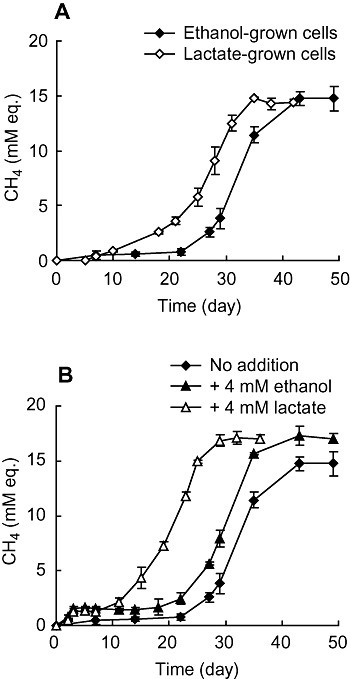 Effects of lactate on syntrophic methanogenesis from propionate. (A) The medium containing 20 mM propionate was inoculated with either ethanol‐ or lactate‐grown syntrophic co‐culture. (B) The medium containing 20 mM propionate was inoculated with ethanol‐grown syntrophic co‐culture and supplemented with either 4 mM ethanol or 4 mM lactate. Methane concentrations were expressed as 'mM equivalents' (mM eq.) by assuming that all methane was present in the aqueous phase. Values are means of three independent cultures. Error bars indicate standard deviations.