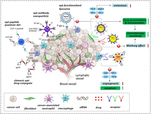 the role of the tumor niche in the origin and influence open i