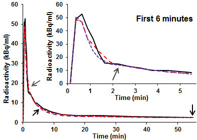 Simultaneously estimated vs blood-sampled input functions: two and threeblood samples. A blood-sampled input function (solid black line) andinput functions simultaneously estimated using two (dashed red line) orthree (dashed purple line) blood samples taken at the times indicated by thearrows. The third blood sample was taken at the time indicated by the greyarrow.