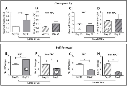 Clonogenicity and self- renewal ability of stromal FPC and non-FPC post-labeled day 15 and 21. (A – D) Cloning efficiency of endometrial stromal cells post-labeled with nanoparticles at day 15 (white bars) and 21 (grey bars). Cloning efficiency of large CFU (A) FPC and (B) non-FPC. Cloning efficiency of small CFU (C) FPC and (D) non-FPC. (E – H) Self-renewal activity of endometrial stromal cells post-labeled with nanoparticles at day 15 (white bars) and 21 (grey bars) using serial cloning assay. Large CFU self-renewal ability of (E) FPC and (F) non-FPC. Small CFU self-renewal ability of (G) FPC and (H) non-FPC Results reported as means ± SEM, n = 4, *, a, bP <0.05. CFU, colony-forming units; FPC, fluorescent persistent cells; SEM, standard error of the mean.