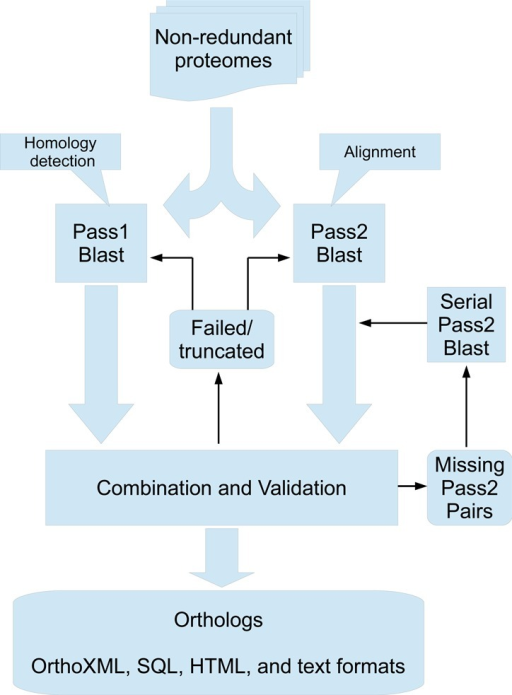 Workflow for the parallel 2-pass BLAST procedure used for generating InParanoid 8. BLAST runs are launched for all pairs of proteomes, running both passes in parallel. When both passes are finished, their outputs are validated by checking for truncation or failure to complete. Intra-proteome matches are checked against the proteome sequences to ensure inclusion of all genes. Pass 1 pairs are combined with pass 2 results such that only pairs accepted in pass 1 are kept, but with alignments from pass 2. A failed validation will either lead to a whole proteome rerun for failed/truncated results or individual serial pass2 reruns for pass1 pairs lacking pass2 results.