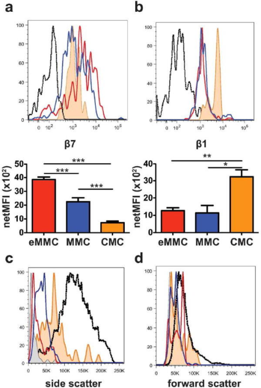 Expression of β7 and β1 integrins and forward and side scatter characteristics of tracheal constitutive and inducible MC populations at D7 after challenges. (a) Representative histograms (top panel) and mean (± SEM) net MFI (bottom panel) of the β7 integrin expression on the 3 populations of tracheal MCs, CMCs (orange shaded), eMMCs (red) and MMCs (blue); black dotted line -isotype control. (b) Representative histograms (top panel) and mean (± SEM) net MFI (bottom panel) of the β1 (CD29) integrin expression on the 3 populations of tracheal MCs colored as in a. (c) Representative histograms of the side scatter characteristics of the 3 MC populations in trachea (colored as in a and compared with splenic MCp (grey shaded) and intraperitoneal MCs (back dotted line). (d) Forward scatter characteristics of tracheal, splenic and intraperitoneal MC populations as in c. Histograms in c and d show the mean value from 2-3 mice/group from one of 5 experiments. Bar graphs represent mean (± SEM) from 4 experiments with 5-8 mice per group *p < 0.05, **p < 0.01, ***p < 0.001.