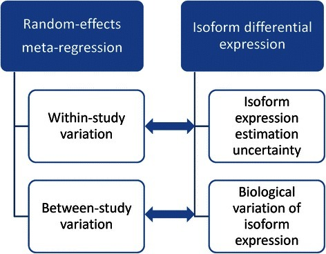 Analogy between meta-regression and isoform differential expression analysis in RNA-Seq